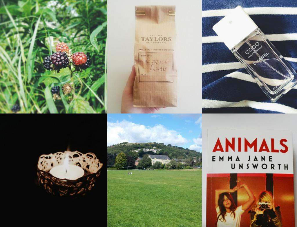 August Instagram Pictures